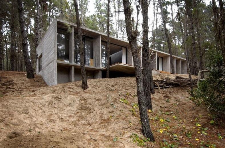 Casa de concreto u hormigón en medio del bosque