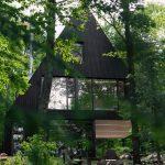 Imagenes De Casas Modernas En Medio Del Bosque
